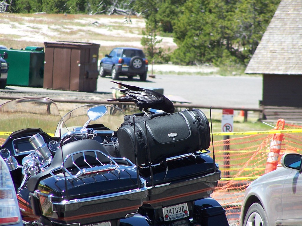 Motorcycle Touring Logs, long distance motorcycle touring, long distance motorcycle travel, Mormon Temple, motorcycle ride, motorcycle riding, motorcycle road trips, Motorcycle Touring, motorcycle travel, motorcycle trip